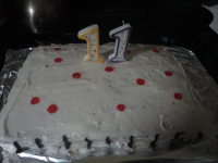 noah-11-cake